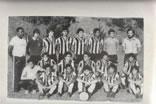 Categorias de Base - Triênio 1981/80/79
